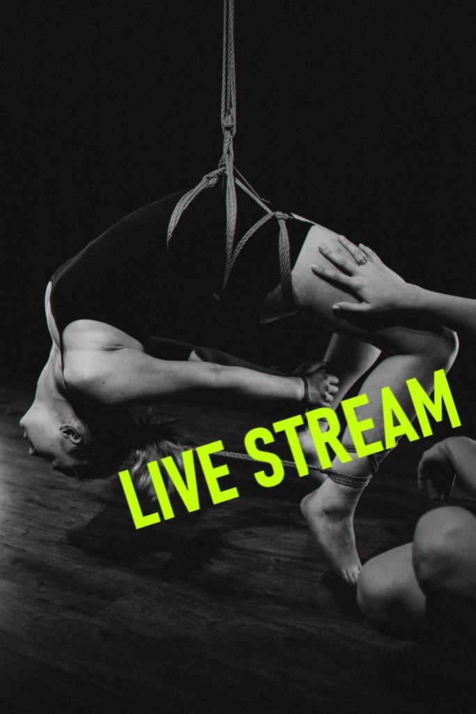UplynuláStream: Opakujeme Hip harnessy